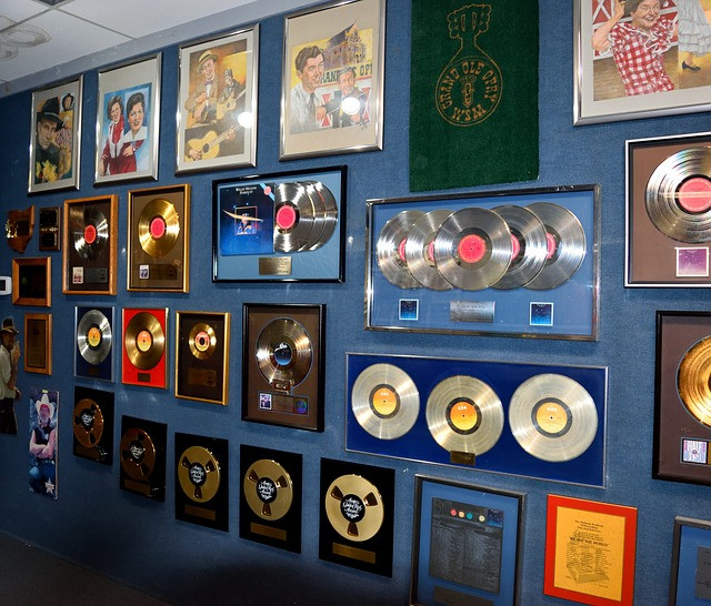 professional songwriter music industry gold records